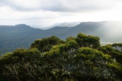 Blue mountains canyons with sunray behind green bushes, Katoomba, New South Wales, Australia. Blue mountains canyons during sunset with sunray behind green stock images