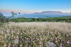 The Blue Mountains in Crimea. Blue sky Mountains nature in Crimea flowers Royalty Free Stock Photography