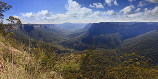 Blue Mountains Evans Lookout Panorama Day Royalty Free Stock Images
