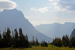 Blue mountains, green pines, and green grass in Glacier National Park. Royalty Free Stock Photography