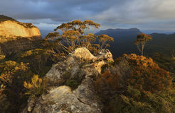 Blue Mountains, Jamison Valley to Mount Solitary Stock Image