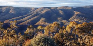 Free Blue Mountains Nature Landscape, Austalia Royalty Free Stock Image - 10106096