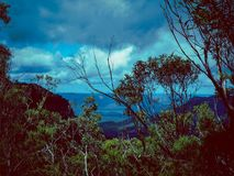 Blue Mountains,NSW Australia. Early morning Blue Mountains view between the trees Royalty Free Stock Photos