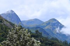Blue Mountains with Sky with White Clouds and Greenery All Around - Natural Green Kerala Landscape Background stock photos