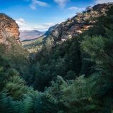 Blue Mountains Vista from Leura Cascades walking track Royalty Free Stock Image