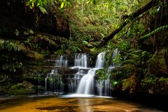 Blue Mountains Waterfalls in lush gully royalty free stock photo