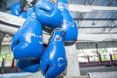 ฺBlue Muay Thai boxing gloves hanging on Corner of  boxing rin Stock Photography