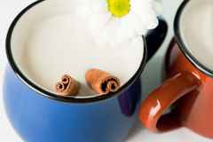 Blue mug with milk and cinnamon Stock Image