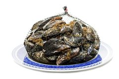 Blue mussel bivalve Royalty Free Stock Photo