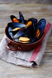 Blue mussel in shells Royalty Free Stock Photo