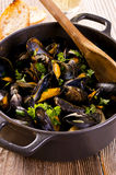 Blue Mussels in Whitewine Royalty Free Stock Photo