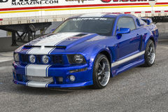 Mustang Royalty Free Stock Photos