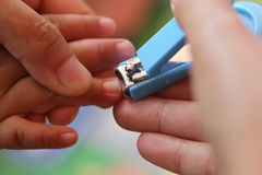 Blue Nail clipper. stock photography