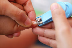 Blue Nail clipper. stock photos
