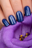 Blue nail polish. Stock Photo