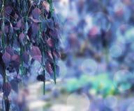 Blue Nature Background. Beautiful Light Blue Nature Background royalty free illustration