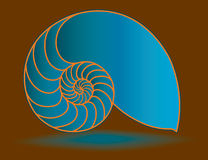 Blue nautilus shell Royalty Free Stock Image