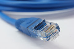 Blue net cable Royalty Free Stock Photo