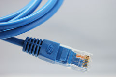 Blue net cable Royalty Free Stock Image