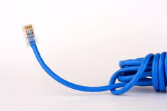 Blue network cable Stock Image