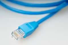 Blue network cable Royalty Free Stock Photos