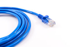 Blue network cable. Isolated on white background royalty free stock photo