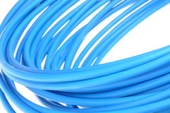 Blue network cable Stock Images