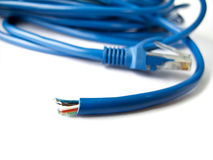 Blue network LAN cable Royalty Free Stock Photos