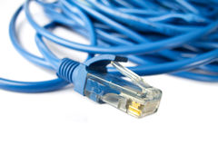 Blue network LAN cable Royalty Free Stock Images