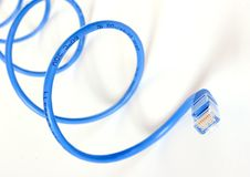 Blue Network Snake. Closeup of network cable Royalty Free Stock Photo
