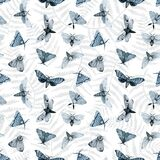 Blue night butterfly, indigo butterfly seamless pattern, wild insects, watercolor vintage, hand drawing