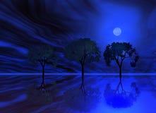 Blue night . Trees Royalty Free Stock Photos