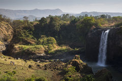 Blue Nile Falls Royalty Free Stock Photography