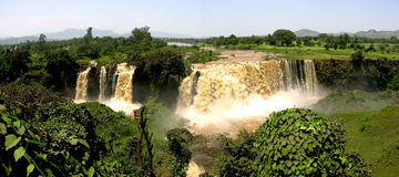Blue Nile Falls, Ethiopia (Panorama). A panoramic of the Blue Nile Falls in Ethiopia near Bahir Dar Royalty Free Stock Image