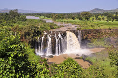 Blue Nile falls (Tis Issat) Royalty Free Stock Image