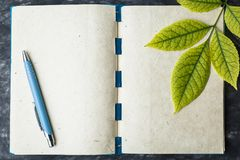 notebook paper with the texture, yellow leaf Stock Photos