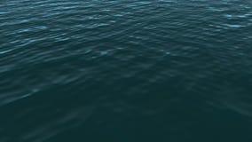 Blue Ocean stock footage