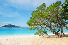 Blue Ocean at Similan Island Thailand. Blue Ocean Clear Water Blue Sky and White Beach Royalty Free Stock Photo
