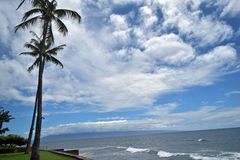Blue ocean and sky with swaying palms along West Maui's famous Kaanapali Beach, Hawaii, USA Royalty Free Stock Photo