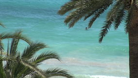 Blue ocean surf framed by palm trees stock video footage