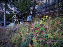 Blue old chair in garden stock photography