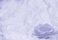 Blue old paper with a rose Royalty Free Stock Images