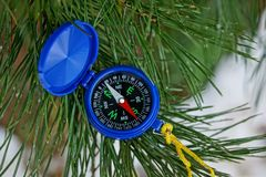 Blue open compass lies on a green pine branch in a needle. A small open circular compass lies on the green coniferous pine branches in the forest royalty free stock images