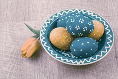 Blue and orange Easter eggs on wood and a tulip Stock Image