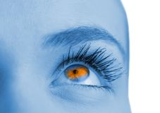 Blue and orange eye on blue face Royalty Free Stock Photography