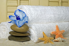 Blue orchid with stone and starfish Stock Photos