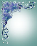 Blue Orchids Wedding Floral border Royalty Free Stock Photography