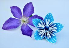 Blue origami flower and real clematis flower. stock photos