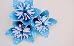 Blue origami flowers made of polka dotted paper. Stock Photos