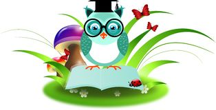 Blue owl on book in grass. Clever owl sitting on open book decorated with grass Stock Photography